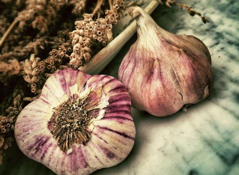 Garlic great remedy